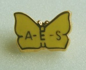 AES society badge