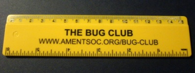 Bug Club ruler